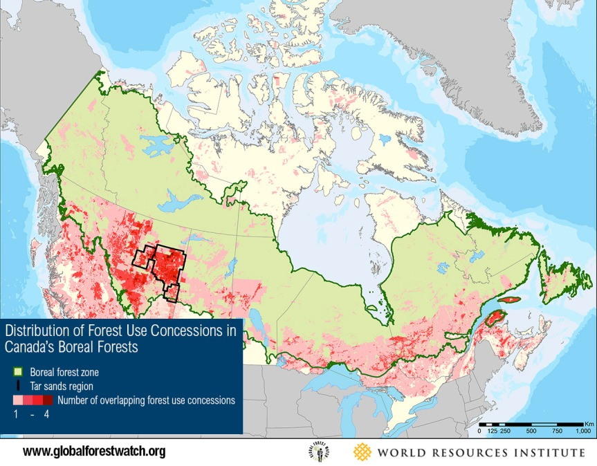 Boreal Concessions